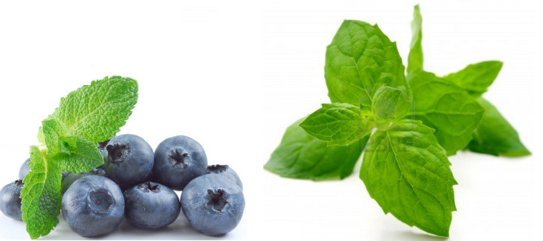 Blueberry Mint e-Juice recipe