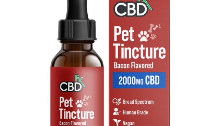 CBD Oil For Pets – Very Large Breeds by CBDFx Review